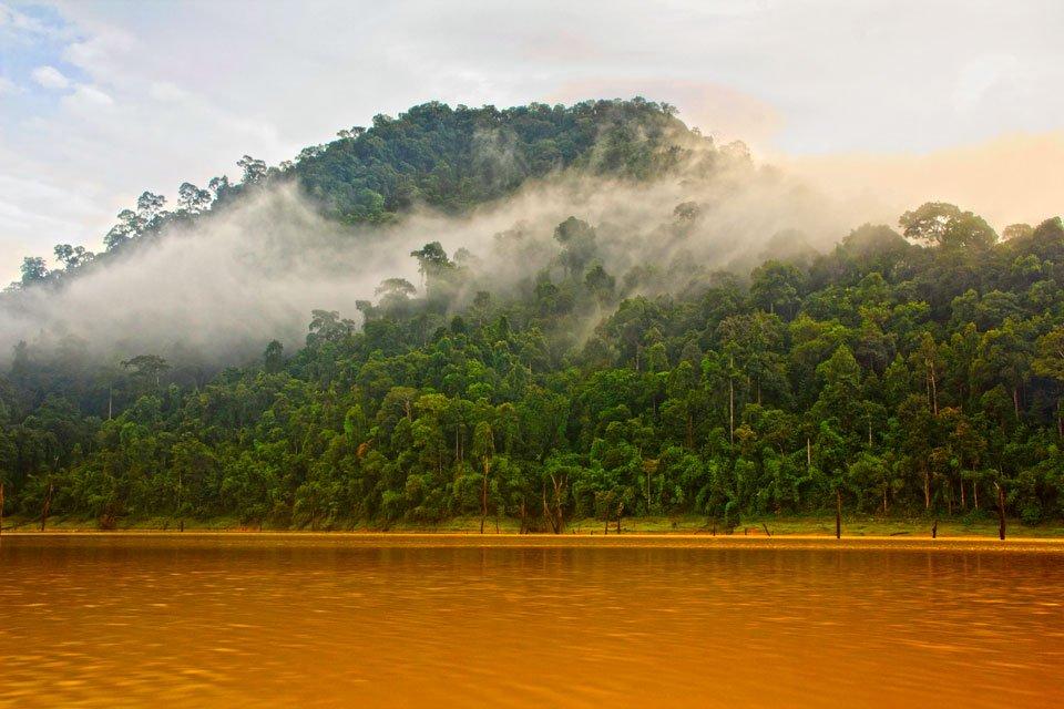 Mist filtering through Klong Saeng at Sunrise