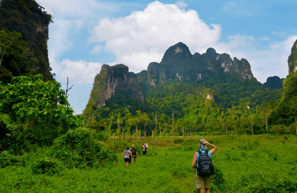 Jungle Trekking in Khao Sok National Park